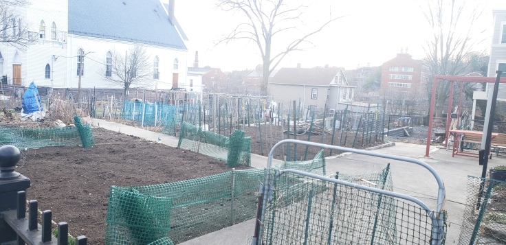 ave money with community gardens